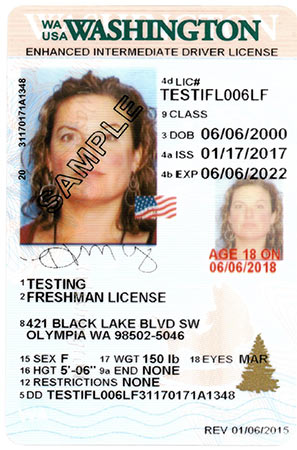 Designs dol Licensing License Wa State Official Site Driver
