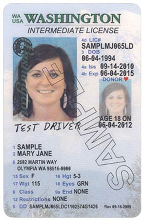 State Site Official License Designs Driver Licensing Wa dol